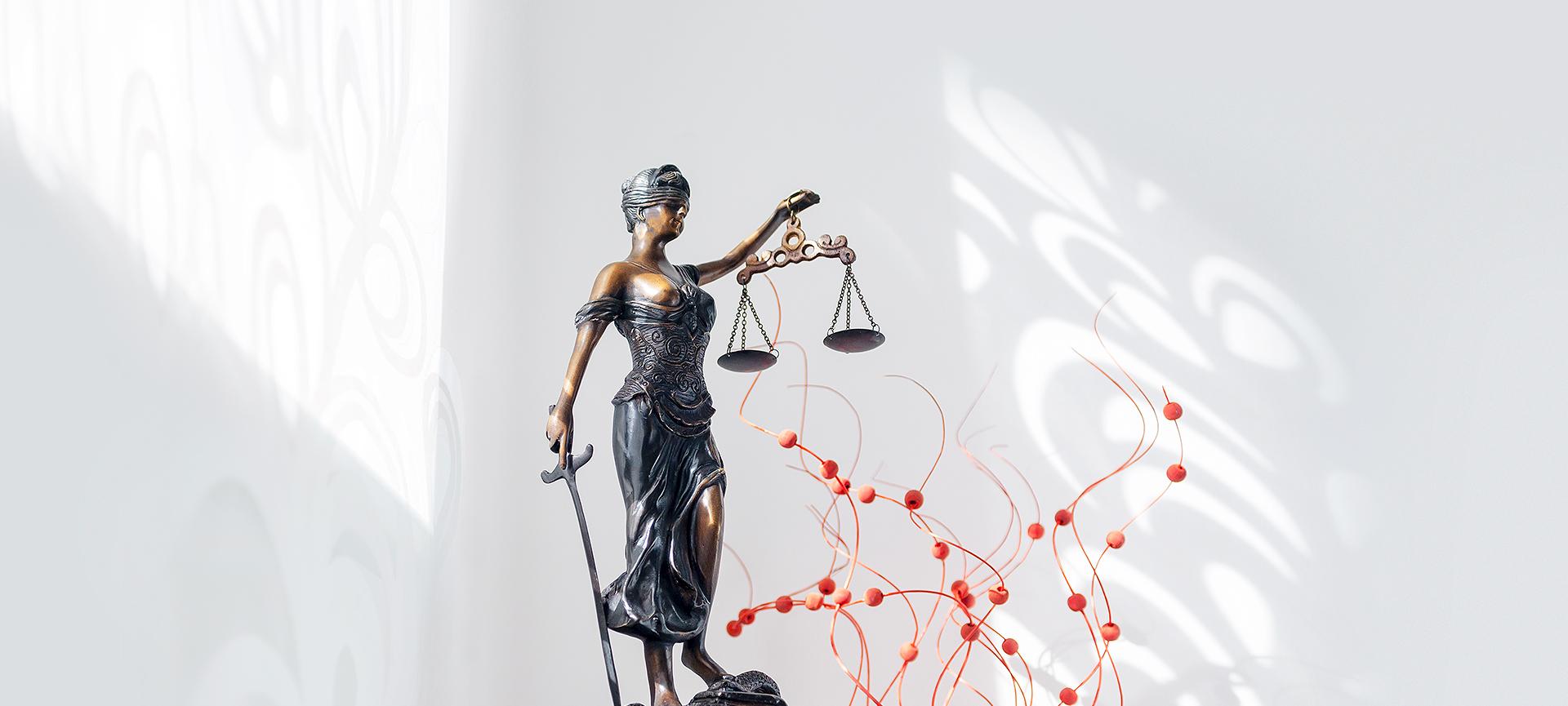 Rechtsanwältin Verena Pitterle